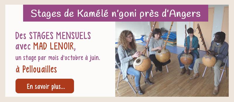 Stage de kamélé n'goni près d'Angers